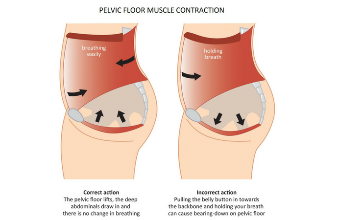 Pelvic Floor Exercises – Why They are Especially Important During Pregnancy