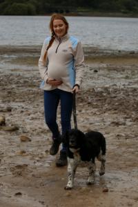 dog walking while pregnant